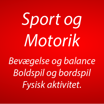 Motorik - balance - leg og boldsspil (9)